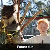Pionier Gardenia - Fauna fun
